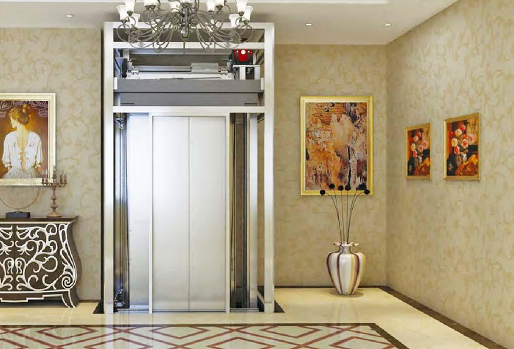Home Lift 01-1